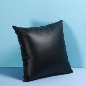 Black leather cushion